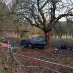 Bei einem Unfall bei Guntersdorf flog ein 32-jähriger Sinner in ein Obstgrundstück.  Foto: Christoph Weber