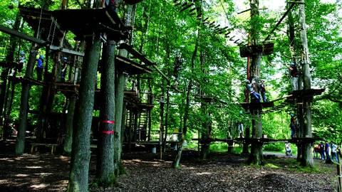 Der Fun Forest Abenteuerpark Homburg/Saar liegt im Naherholungsgebiet Jägersburg. Foto: FunForest GmbH
