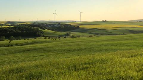 Der Goldene Grund, der nördliche Teil der Idsteiner Senke, ist eines der Gebiete, die dank der Biosphärenregion zusätzlichen Schutz erhalten sollen. Foto: Gemeinde Hünfelden