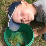 Der kleine Tom ist stolz, dass er bei der Sammelaktion des Naturschutzbunds helfen darf. Foto: Michael Hoschkara