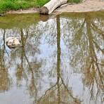 Naturfreunde wird vor allem das Fließgewässer am gesuchten Lieblingsort reizen. Foto: DigiAtel/Heibel