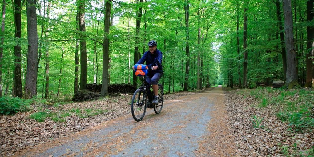 Mit dem Rad durch den Wald nach Braunfels: eine schöne, aber keine schnelle Verbindung.  Symbolfoto: Pascal Reeber