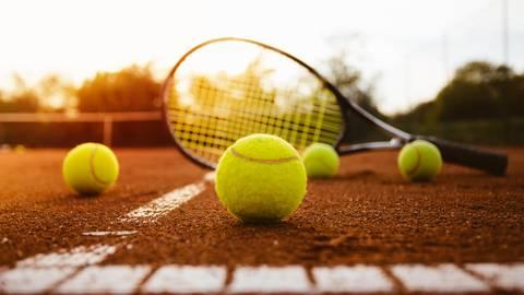 Bäumchen, wechsle dich: In der Wiesbadener Tennisszene herrscht aktuell Unruhe. Archivfoto: Mirko Popadic/Fotolia