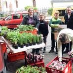 Umzug der Kräuter: Statt im Pfarrgarten findet der Kräutermarkt in einer Vinothek statt. Foto: Heinz Margielsky