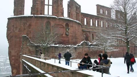 Die Ruine des Heidelberger Schlosses. Foto: Daniel Holzer