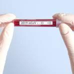 Coronavirus Foto: photoguns - stock.adobe