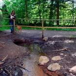 Die Niddaquelle am neuen Austrittsort sprudelt kräftig, wie Naturparkführerin Karin Bochenek schon oft beobachtet hat.  Fotos: Weil