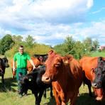 """Die Art, wie Felix Hoffarth mit seinen Rindern umgeht, trägt dazu bei, zum """"Landwirt des Jahres"""" gekürt zu werden.   Foto: Gianfranco Fain"""