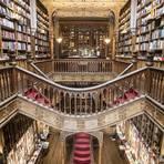 Die Livraria Lello in Porto, Portugal soll Vorbild für die Buchhandlung Flourish & Blotts der Harry-Potter-Reihe gewesen sein. Foto: Ivo Rainha