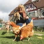 """""""Tiergarten""""-Leiterin Anke Runge serviert den Hennen ihr Frühstück: gekochte Spaghetti. Die 19 Hühner stammen von der Organisation """"Rettet das Huhn"""", die ausgediente Legehennen auf Gnadenhöfe und an tierliebe Privatpersonen vermittelt. Foto: hbz/Jörg Henkel"""
