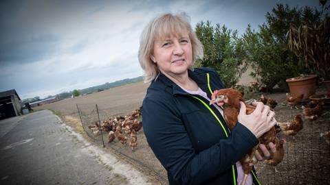 """Birgit Biebesheimer mit """"Lucky"""" auf ihrem Arm. Das Huhn hat als einziges Tier den verheerenden Scheunenbrand in Nordheim (Ruine im Hintergrund) überlebt. Das Huhn lebt jetzt beim Nachbarn, die Familie kämpft indes um ihre Zukunft. Foto: Thorsten Gutschalk"""