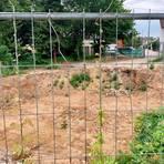 Wo jetzt noch eine Grube ist, soll eine neue Kinderkrippe entstehen. Foto: Jens Etzelsberger
