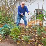 Hans Günther Kilberths Leidenschaft sind Bonsais. Unter anderem ein Eiche, eine Mahonie und mehrere Kirschlorbeer hat er im Garten eingegraben. Foto: Ulrike Bernauer