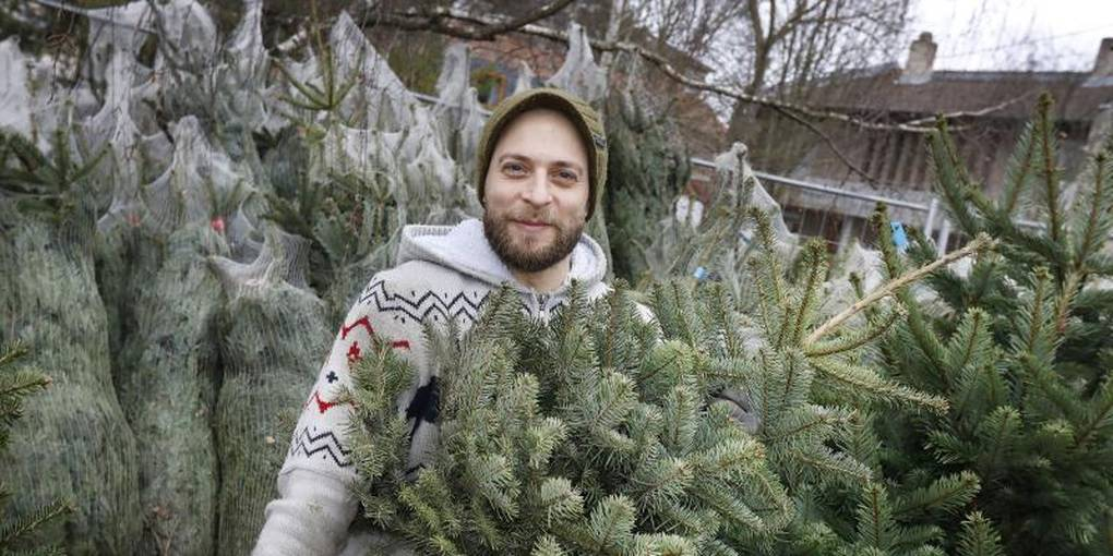 Lisas Erster Weihnachtsbaum.Weihnachtsbaum In Mainz Zu Vermieten Thomas Müller Setzt Mit Seiner