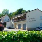 Im Paul-Schneider-Heim in Dornholzhausen soll 2021 eine Wald- und Natur-Kita an den Start gehen. Foto: Rieger