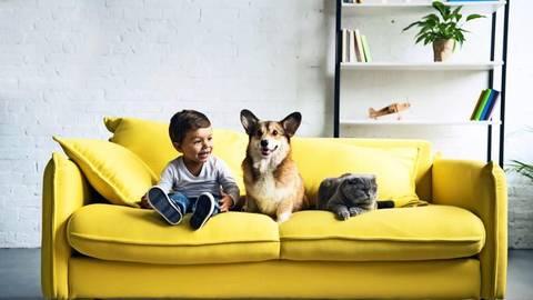 Wissenschaftlern zufolge  wirken sich Tiere positiv auf die Entwicklung von Kindern aus. Fotos: Adobe Stock/Lightfield Studios, Brandstätter