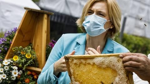 Landwirtschaftsministerin Julia Klöckner hat Ärger mit Bienenschützern - wegen eines Insektizids. Archivfoto: dpa