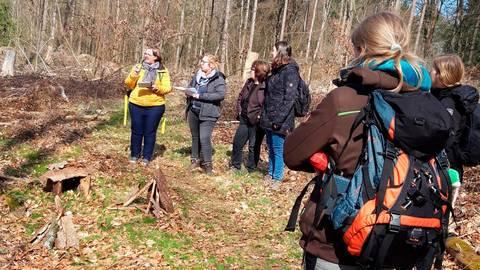 """Beim Workshop mit """"HessenForst"""" sind die Mitarbeiter der """"Bärenhöhle"""" im Wald unterwegs. Foto: Lahn-Kinderkrippen"""