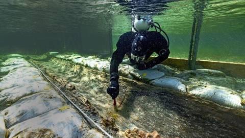 Ein Taucher an dem  etwa 4500 Jahre alten  Einbaum Fotos: www.florian-huber.info Huber/submaris, Hildegard Nagler