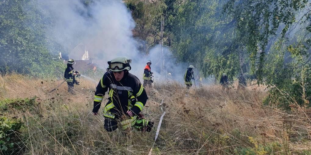 Mandel: Feuer breitet sich auf 5000 Quadratmetern aus_Allgemeine Zeitung