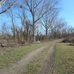 Der Rückschnitt an den Bäumen im Naturschutzgebiet Woogwiesen entlang der Selz wurden von der VG Nieder-Olm ohne Absprache mit der Unteren Naturschutzbehörde durchgeführt. Das sorgt nun für Irritationen. Archivfoto: hbz/Stefan Sämmer