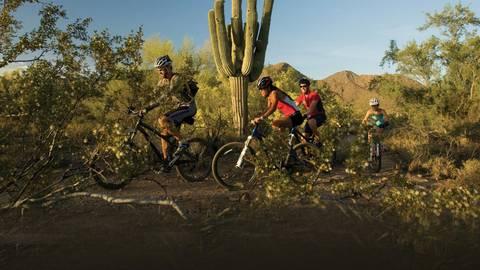 Die Wüste Arizonas bietet ideale Bedingungen für ambitionierte Mountainbiker. Foto: Experience Scottsdale