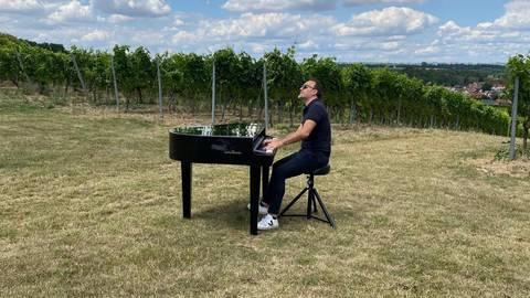 """Auftritte bei Weingütern und Open-Air-Veranstaltungen zeigten der Band """"Jammin' Cool"""" neue Perspektiven auf. Fotos: Heiko Schulz"""