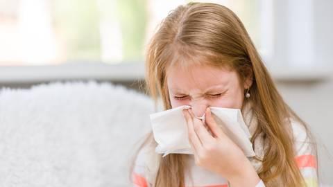 Husten und Schnupfen - meist nur eine harmlose Erkältung. Aber ab wann sollten Kinder zuhause bleiben? Foto: AdobeStock - Ermolaev Alexander