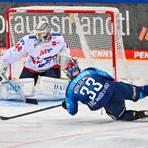 """Mannheims Torhüter Dennis Endras (hinten) führt nun die Liste mit den meisten """"Zu-Null-Spielen"""" in der DEL an. Foto: dpa"""