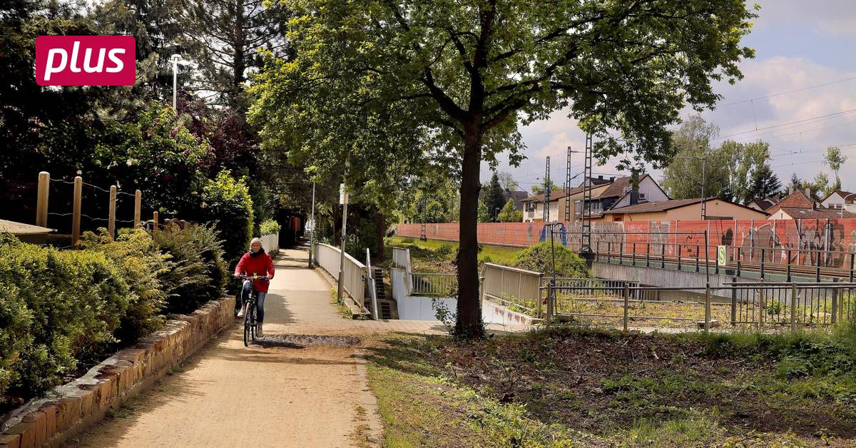 Darmstadt – Frankfurt cycle path: it continues in late summer