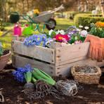 Nur Gartenmärkte dürfen laut den aktuellen Regeln derzeit im Lahn-Dill-Kreis öffnen. Baumärkte nicht. Symbolfoto: Janette Dietl/Fotolia