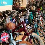 E-Bikes in allen Ausführungen sind der Renner auf dem aktuellen Fahrradmarkt.  Foto: Anna-Lena Fischer