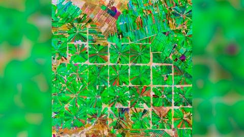 Trockenwald für Landwirtschaft gerodet.Foto: ESA