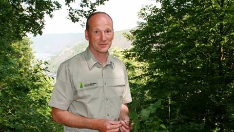 Forstamtsleiter Axel Henke am Ausblick Prinzenkopf: Deutliche Spuren des Klimawandels im Rheintal zeigen sich durch Trockenschäden an den Steilhängen gegenüber. Foto: Christine Tscherner