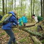Forstarbeit vor 200 Jahren selbst ausprobieren. Foto: Sascha Erdmann  Foto: Sascha Erdmann