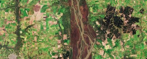 Die dunkelgrüne Fläche östlich der Esteros ist der Forstwirtschaft gewidmet, einer wichtigen Industrie für die Region.