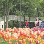 Die Bundesgartenschau in Koblenz 2011 war ein Erfolg. So soll es auch im Mittelrheintal werden. Die Frage ist nur wann. Archivfoto: Blum