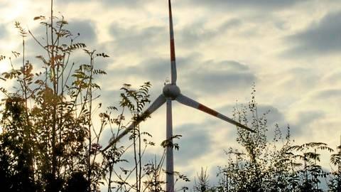 Die Bürgerinitiative gegen die Windräder nahe Niederasphe gibt nicht auf. Zwar liegt seit Dezember eine Genehmigung für die Anlage vor, doch nun gibt es ein Gutachten, in dem geschützte Vogelarten aufgeführt werden.  Symbolfoto: Edgar Meistrell