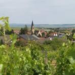 Der Weinort Siefersheim liegt inmitten des Rebenmeeres der rheinhessischen Schweiz. Foto: Wolfgang Blum