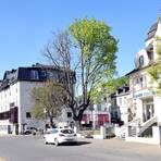 Der Spitzahorn am ehemaligen Hotel Anker ist krank und muss abgeholzt werden. Foto: Heinz Margielsky